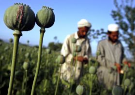 Sourse http://listcrux.com/top-10-countries-known-for-producing-opium/